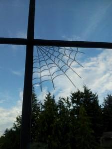 Texta Spider webs